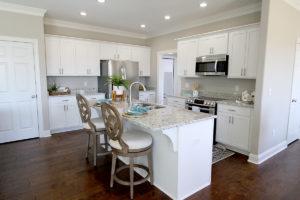Model Homes Kitchen design
